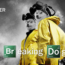 30517 breaking bad breaking doge