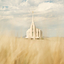 Rexburg temple lds 1025212 wallpaper