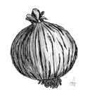Onion3102
