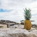 Annika The Pineapple