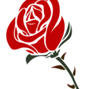 Animated rose png