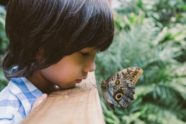 Writing for children   write the world
